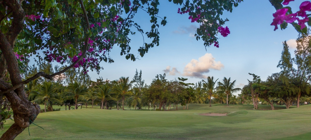 nelson-gay-why-barbados-golf